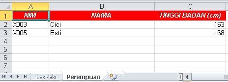 Export MySQL ke Excel
